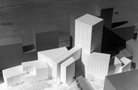 Chicago Library design model